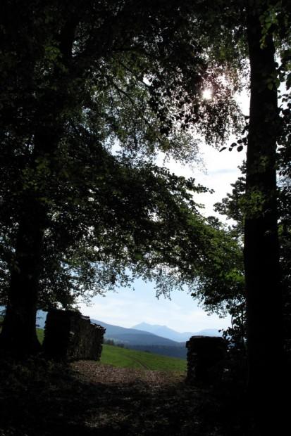 umgeben-von-natur-und-starken-bergen
