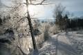 Schliersee Winterangebot 7 Tage buchen 6 Tage bezahlen Ferienwohnunen Priller