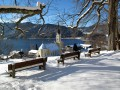 Alpenplus Ferienwohnung Priller mit Terrasse oder Balkon