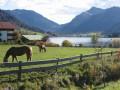 Schliersee Bergblick Fereinwohnungen Priller 4 Sterne