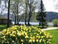 Bayrische Seen Angelurlaub Schliersee Ferienwohnungen 4 Sterne