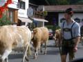 Schliersee touristic urlaub ferienwohnungen Priller 4 Sterne