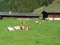 Ferienwohnung Oberbayern Schliersee Angebot 7 Tage buchen 6 Tage bezahlen Ferienhaus Priller
