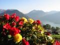 Schliersee Berge Kuren Fereinwohnungen Schliersee 4 Sterne